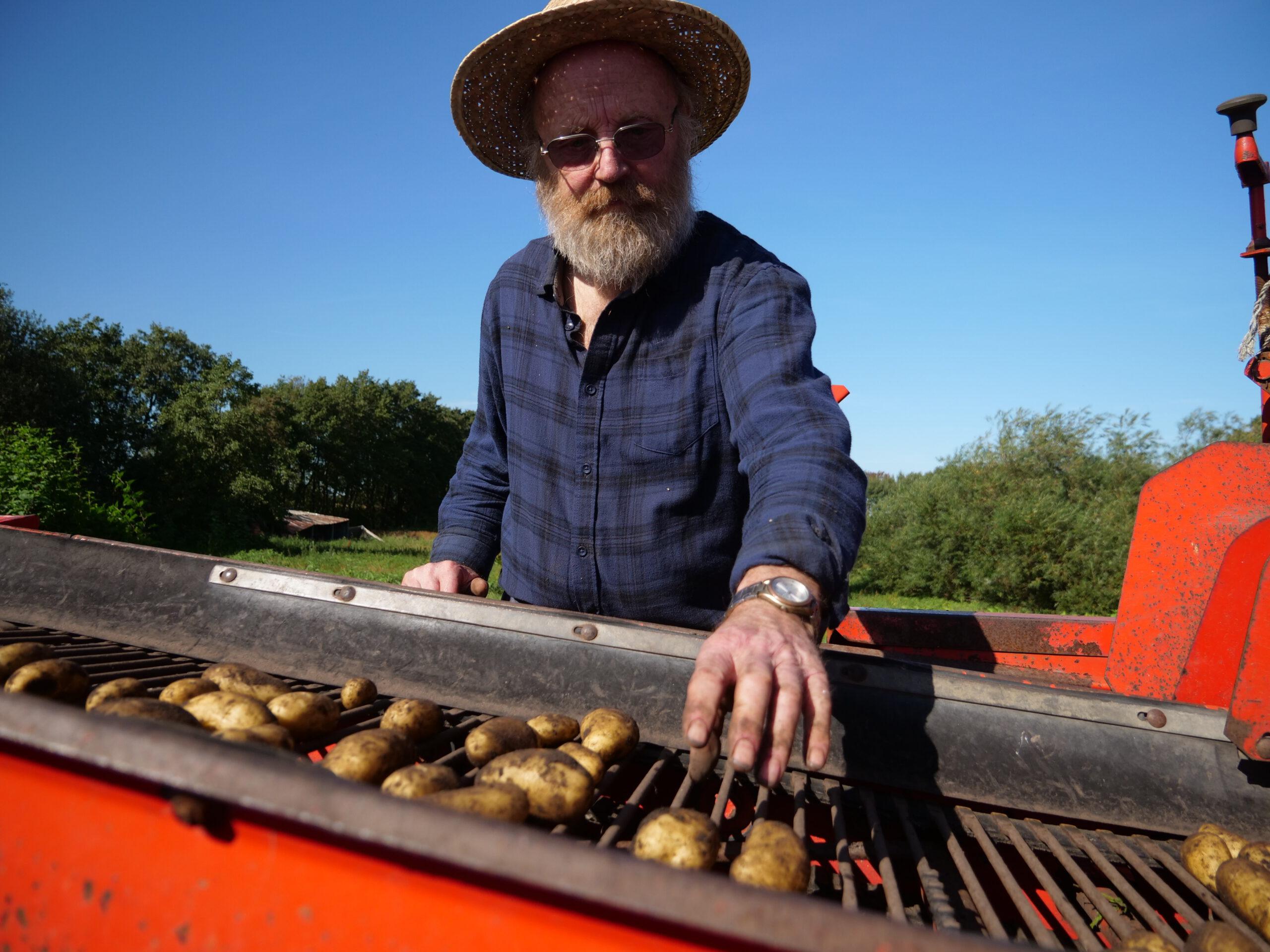 Herbert Petersen bei der Kartoffelernte